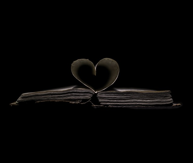 heart-623530_640