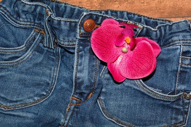 jeans-564061_640.jpg