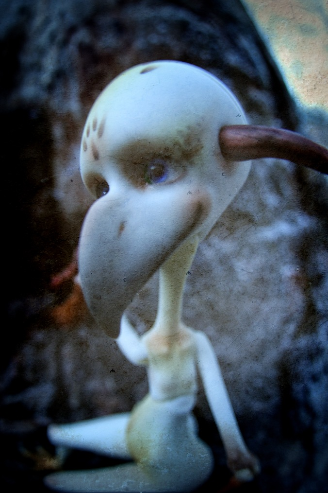 bird6.jpg