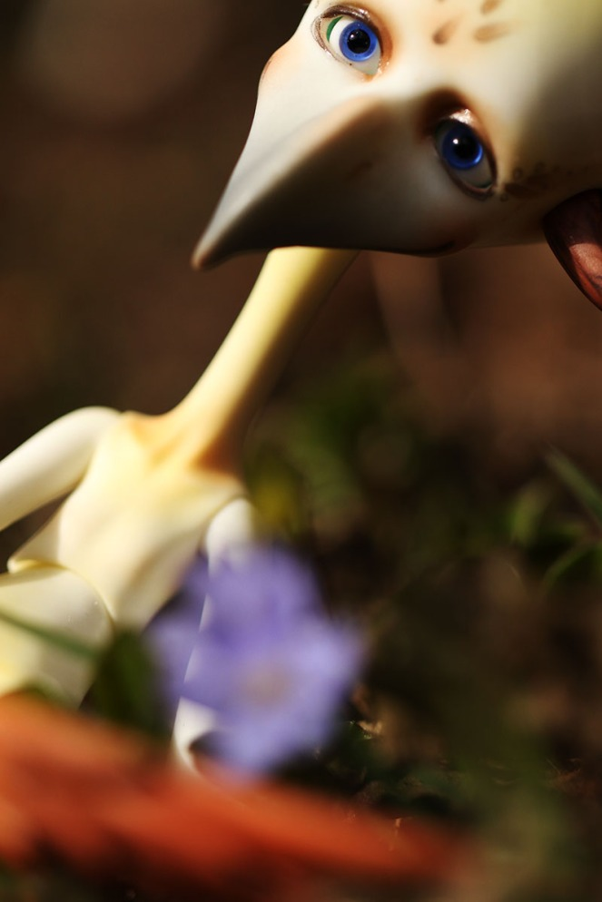 bird2liten