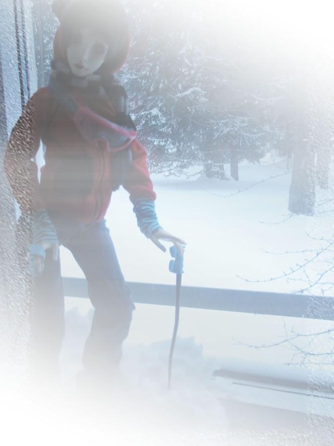 ski6 copy